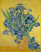 http://new.artsmia.org/masterpiece-in-focus/van-gogh/