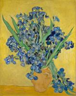 http://new.artsmia.org/masterpiece-in-focus/van-gogh/